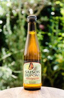 Saison Dupont Bio - Brasserie Dupont - Une Petite Mousse