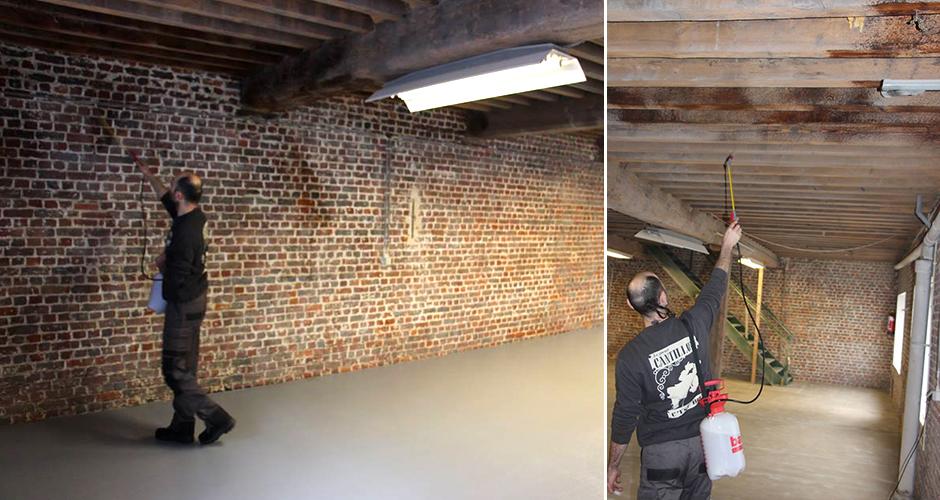 La brasserie belge Cantillon arrose ses murs de bière