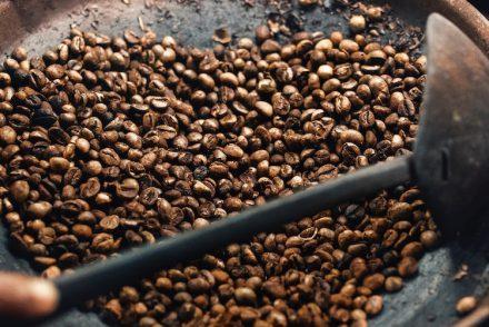 Kopi Luwak : le café le plus cher du monde dans une bière
