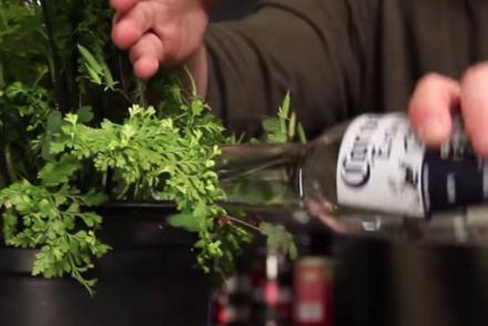 5 trucs et astuces que tout buveur de bière se doit de connaître