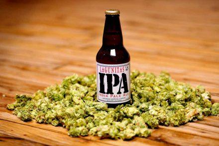 Heineken et la bière artisanale : rachat de Lagunitas