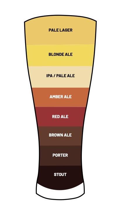 types-de-bieres-couleurs-infographie