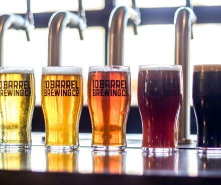 Quel type de bière est fait pour vous ? Stout, Sour et Lager : révisez vos classiques !