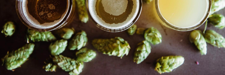 On vous dit tout sur l'utilisation du houblon dans la bière