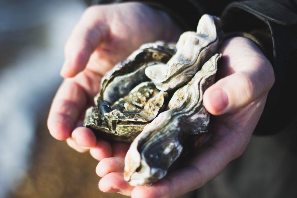 oyster-stout-porter