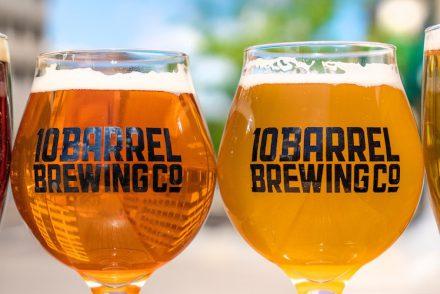Quel verre à bière utiliser ? Tout sur l'art et la manière de déguster sa bière