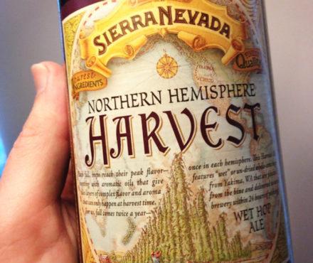 Harvest ale : la bière de récolte au houblon frais