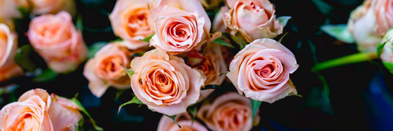 Des fleurs pour la Saint Valentin : l'idée cadeau indémodable