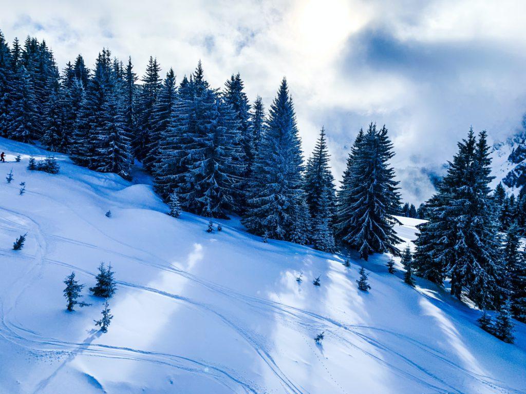 brasserie station de ski